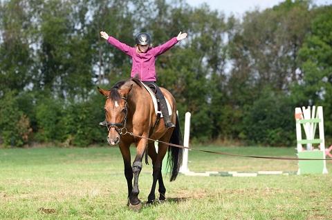 pferdesport/08.09.2018--vereinsturnier/4.jpg